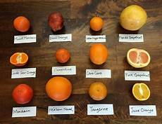 tangerine size chart one lucky soul the difference between mandarin tangerine