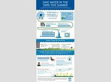 Tips for Watering Wisely   WaterSense   US EPA