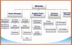 Large Company Organizational Chart 11 Organizational Chart Of The Company Company Letterhead
