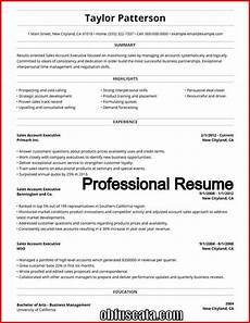 Resume Professional Writers Reviews Professional Resume Writers