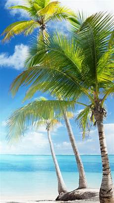 Caribbean Iphone Wallpaper by Free Iphone Backgrounds Pixelstalk Net