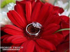 Wedding Rings Gallery ? Wedding Wishes
