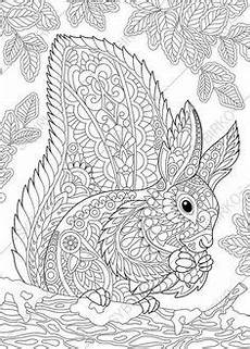 Ausmalbilder Tiere Supercoloring H 252 Bsches Eichh 246 Rnchen Zentangle Coloring Mit