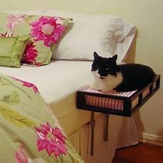 cat beds pet cat beds cat furniture