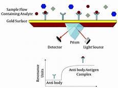 Surface Plasmon Resonance Schematic Representation Of Surface Plasmon Resonance Spr