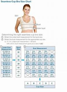 Crochet Bra Cup Size Chart Chart For Bra Sizes And Cup Sizes Marena Seamless Cup