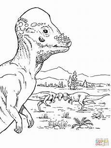pachycephalosaurus dinosaur coloring page free printable