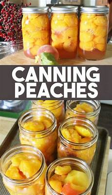 Light Syrup For Canning How To Can Peaches In Light Syrup Or Honey