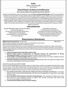 Professional Resume Writer Advices For Resume Writing