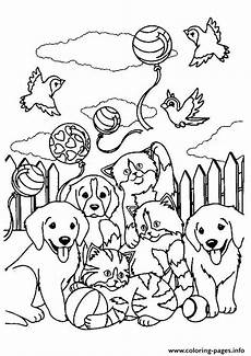 ruckus risky a4 coloring pages printable