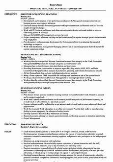 Example Of Business Resume Business Planning Resume Templatedose Com