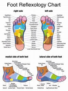 Reflexology Charts Free Download 31 Printable Foot Reflexology Charts Amp Maps Template Lab