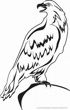 Malvorlage Vogel Kinder 301 Moved Permanently