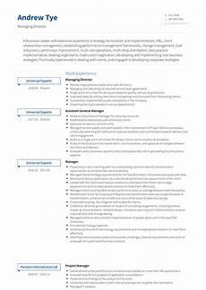 Resume Managing Director Managing Director Resume Samples And Templates Visualcv