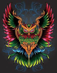 Colorful Owl Art Colorful Owl Wallpapers Top Free Colorful Owl