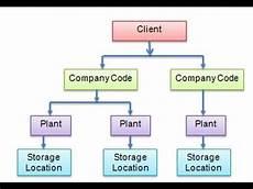 Sap Organizational Structure Sap Mm Organisational Structure Youtube