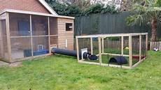 costruire gabbia conigli recinto per conigli soluzione fai da te e pronta all uso