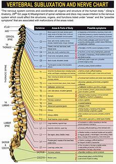 Chart Of Nerves In Back Nerve Chart Subluxation Chiropractic Care Chiropractic