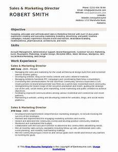 Director Of Sales Resume Sales And Marketing Director Resume Samples Qwikresume