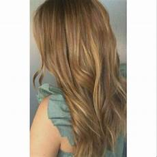 Hbc Hair Color Chart Philippines Bremod Hair Color 8 3 Light Golden Brown With Oxygen100ml