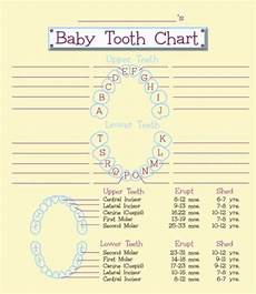 Baby Teeth Chart Letters 38 Printable Baby Teeth Charts Amp Timelines ᐅ Templatelab