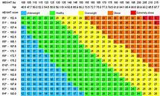 Bmi Chart Metric Bmi Calculator With Charts And Calculator Updated