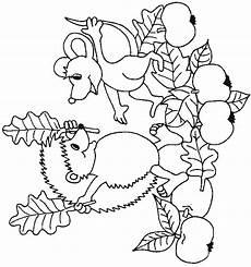 Malvorlagen Gratis Herbst Gratis Malvorlagen Herbst