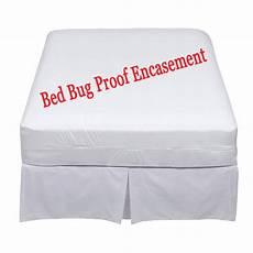 bed bugs toronto toronto bed bugs help bed bug mattress
