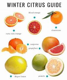 tangerine size chart citrus cranberry smoothie guide to winter citrus