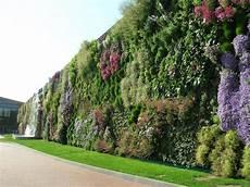 Vertical Green What Is Vertical Gardening 101 Grow Green Food