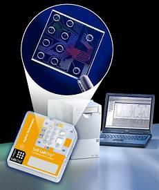 Lab On Chips Background On Electrophoresis