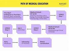 How Many Years Of School To Become A Dentist How To Become A Doctor College Learners