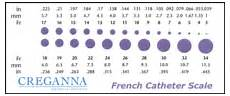 French Size Chart French Catheter Scale Wikipedia