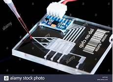 Lab On Chips Lab On A Chip Lac Technology With A Pipette Stock Photo