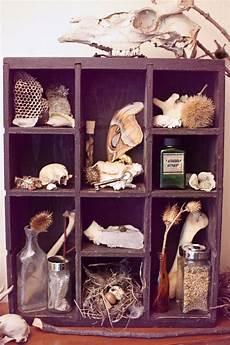 heaven can wait cabinet of curiosities