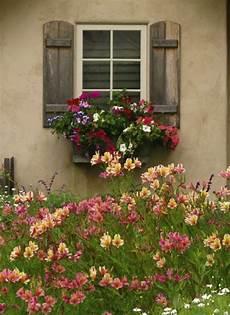 fioriere per davanzale finestra my world of colour talesfromcarmel fioriere