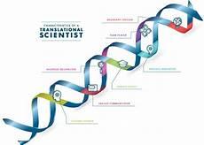 Translation Science Translational Science Skills National Center For