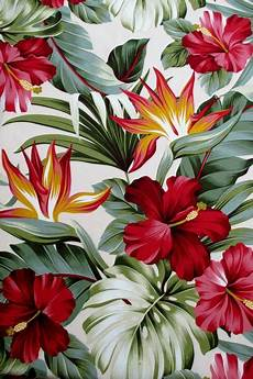 tropical floral iphone wallpaper fabric hibiscus floral on tropical by
