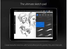 Procreate Screen Shot Sketch ? iPad Notebook