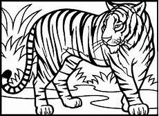 Malvorlagen Kostenlos Tiger Tiger Coloring Pages To And Print For Free