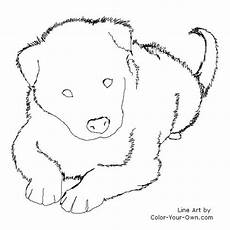 border collie puppy coloring page