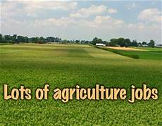 Agricultural Career List Agriculture Jobs 2017 200 Govt Vacancies Opening