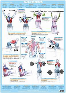 Weight Lifting Exercise Chart Back Muscles Exercise Weight Training Chart Chartex Ltd