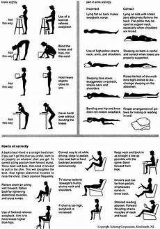 Lower Back Stretches Chart Exercises For Lower Back Pixelsham