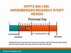 Bioassay Design Edsp Webinar 3 In Vivo Assays For The Edsp