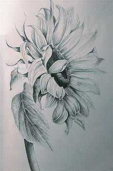 Drawings Of A Flower Pencils Sunflower Drawing Pencil Drawings Of Flowers