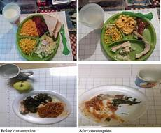 Meal Intake Percentage Chart Perceptions Of Using Smartphone Technology For Dietary