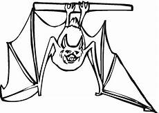 bat coloring pages the sun flower pages