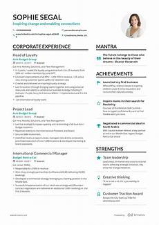 Successful Resumes The Best 2020 Executive Resume Example Guide