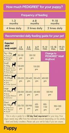Pedigree Puppy Feeding Chart Pedigree Puppy Milk Amp Vegetables Dog Food 1 2 Kg